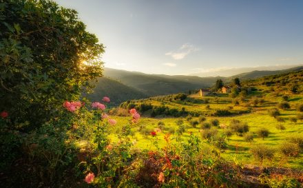 Toscane, Foto: Flickr - Konrad Jagodziński