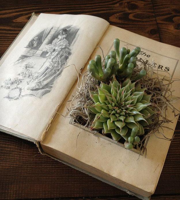 Te koop, maar ook makkelijk zelf te maken. Een oud boek ombouwen tot plantenbakje..