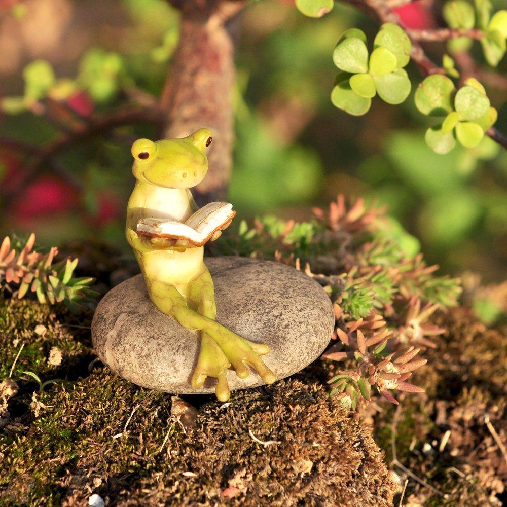 Een lezende kikker: iets voor in jouw tuin?